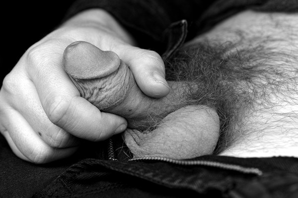 Black and white close-up photograph of an adult man holding his circumcised penis between his thumb and forefinger.